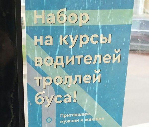203823_9_trinixy_ru.jpg