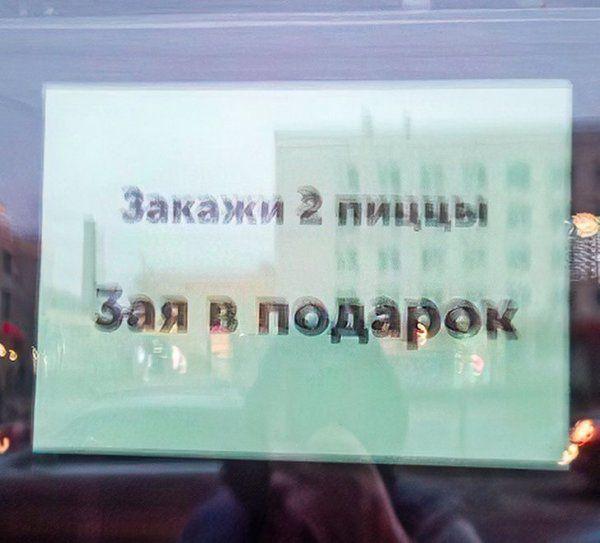 203823_4_trinixy_ru.jpg