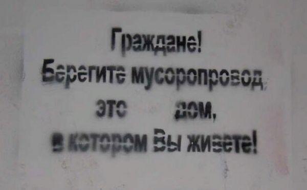 203823_12_trinixy_ru.png