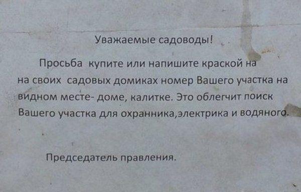 203823_10_trinixy_ru.jpg