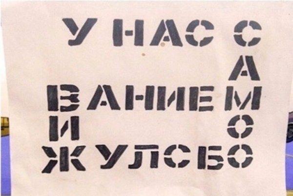 203823_17_trinixy_ru.jpg