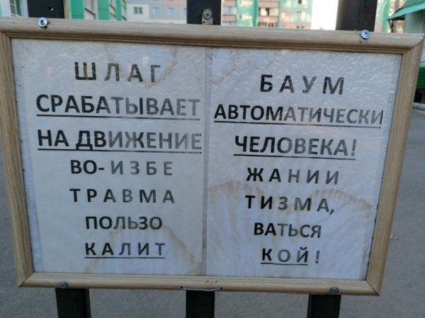 203823_16_trinixy_ru.jpg