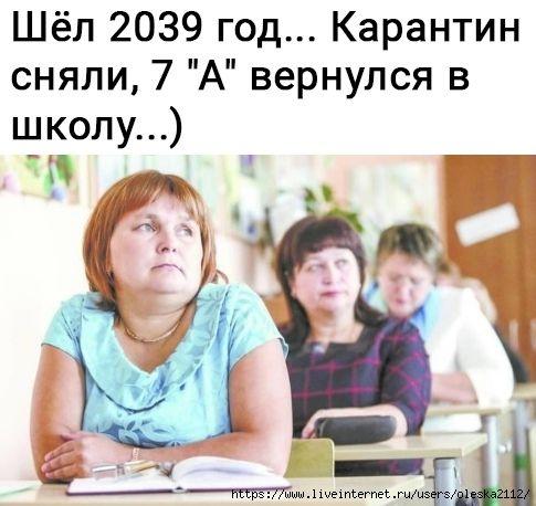 1605898705_154052612_37a.jpg