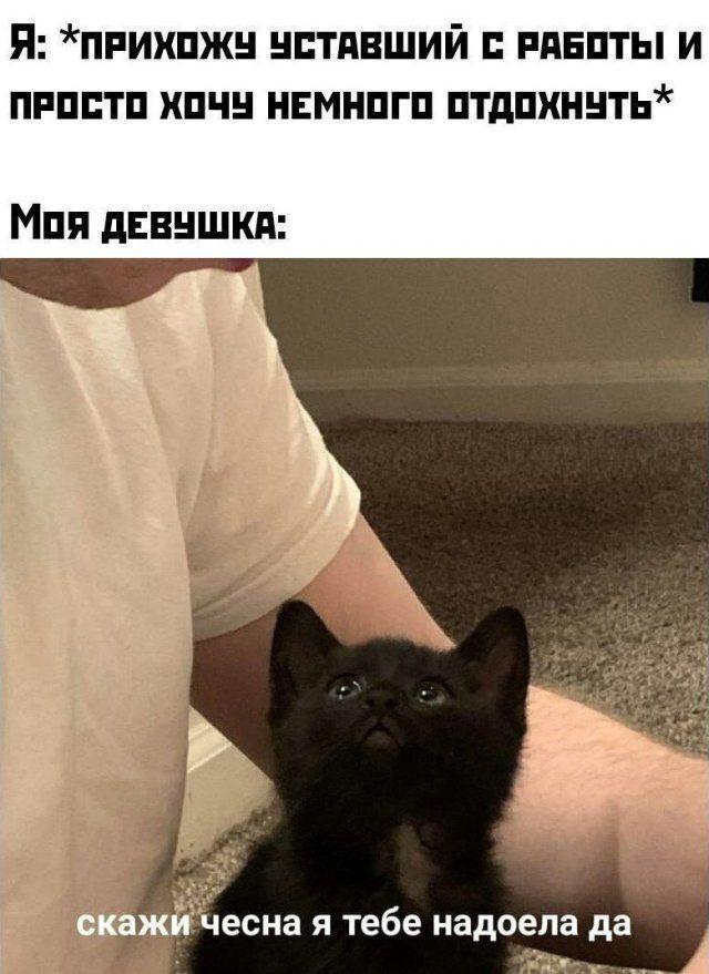 Немного странного и черного юмора Приколы,ekabu,ru,прикол,странное,юмор