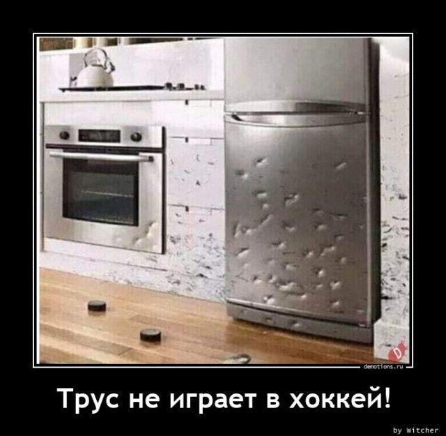 1606118165_demy-14.jpg