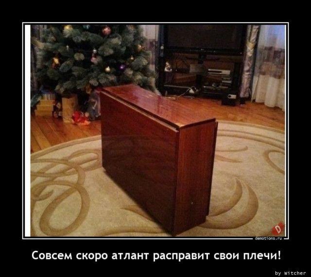 1606118204_demy-4.jpg