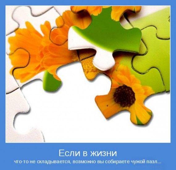 1605896587_153952294_1332053625_1331788387_1331501803_7.jpg