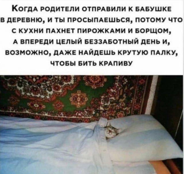 Мемы и шутки из Сети  Приколы,ekabu,ru,мемы