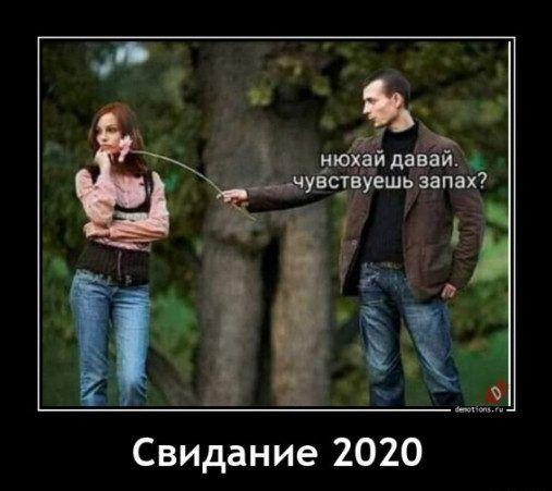 233750_623.jpg
