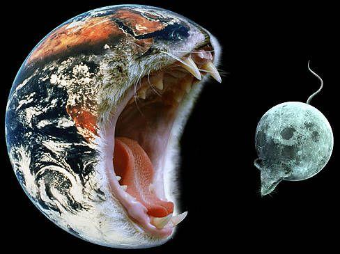 Диск с приколами: самые ностальгические картинки из девяностых и нулевых Приколы,ekabu,ru,видео,изобретения,люди,прикол