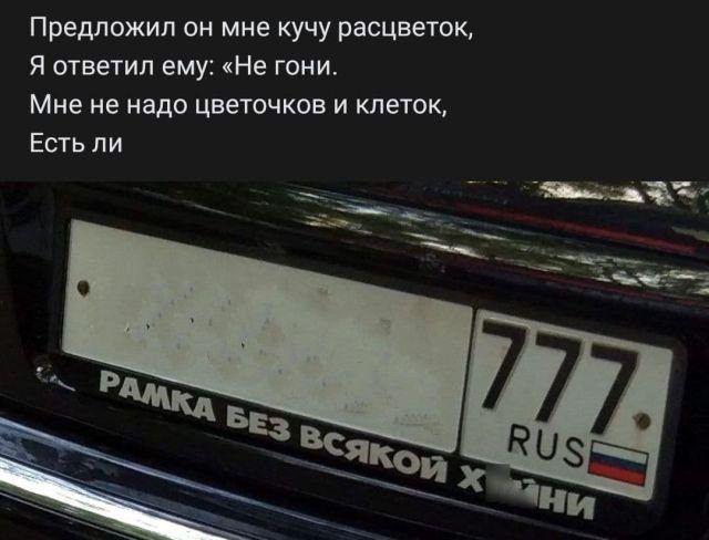 e99923.jpg
