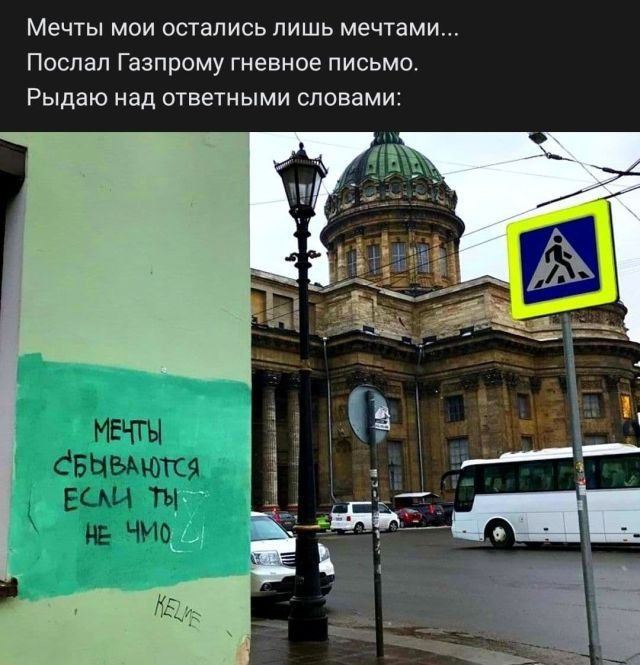 204437_11_trinixy_ru.jpg