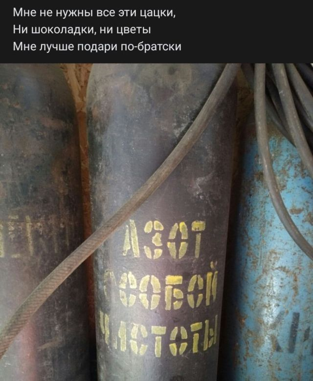 204437_2_trinixy_ru.jpg