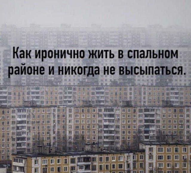 204546_13_trinixy_ru.jpg