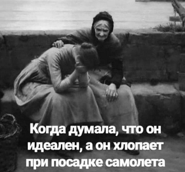 204546_15_trinixy_ru.jpg