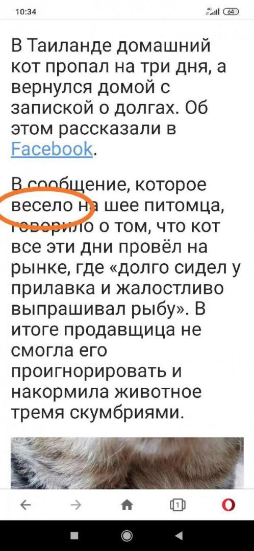 204600_15_trinixy_ru.jpg
