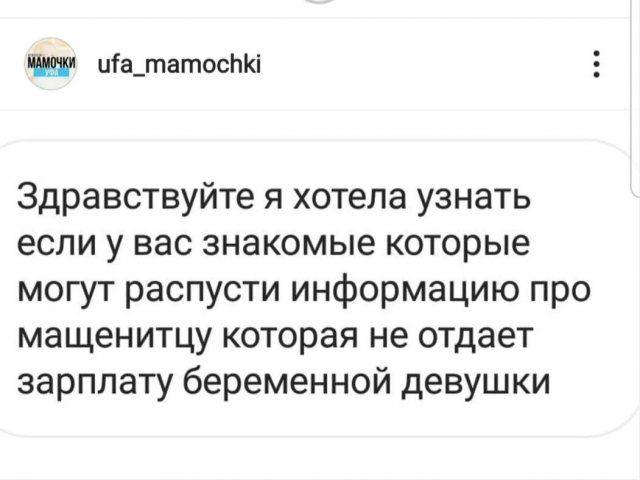 204600_11_trinixy_ru.jpg