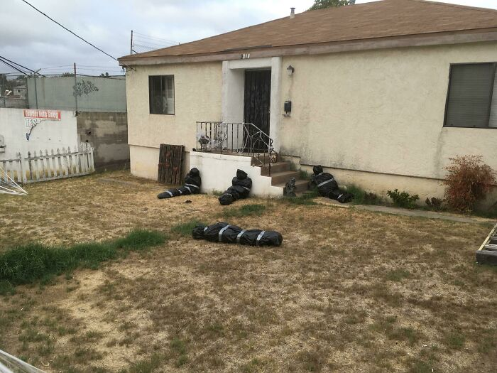 муляжи трупов во дворе дома