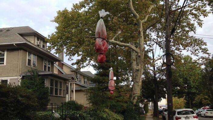 мешки в форме тела висят на деревьях