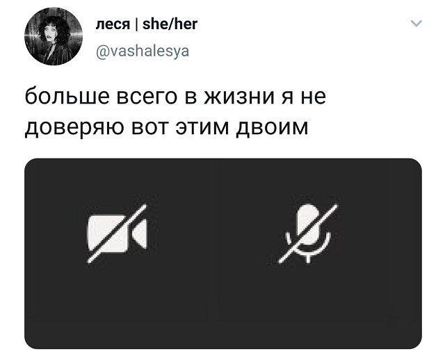235980_78932.jpg