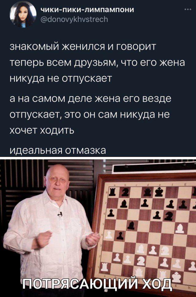 204731_23_trinixy_ru.jpg