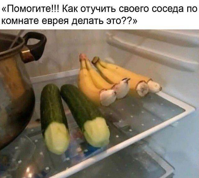 204731_1_trinixy_ru.jpg