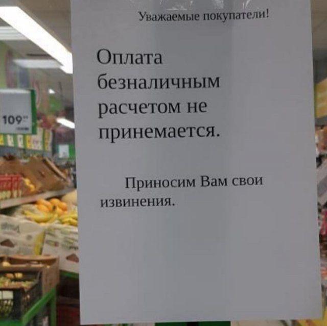 204743_11_trinixy_ru.jpg