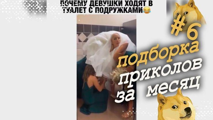 Шестая подборка приколов ноября │видео