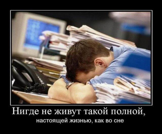 1606984411_demki-1.jpg