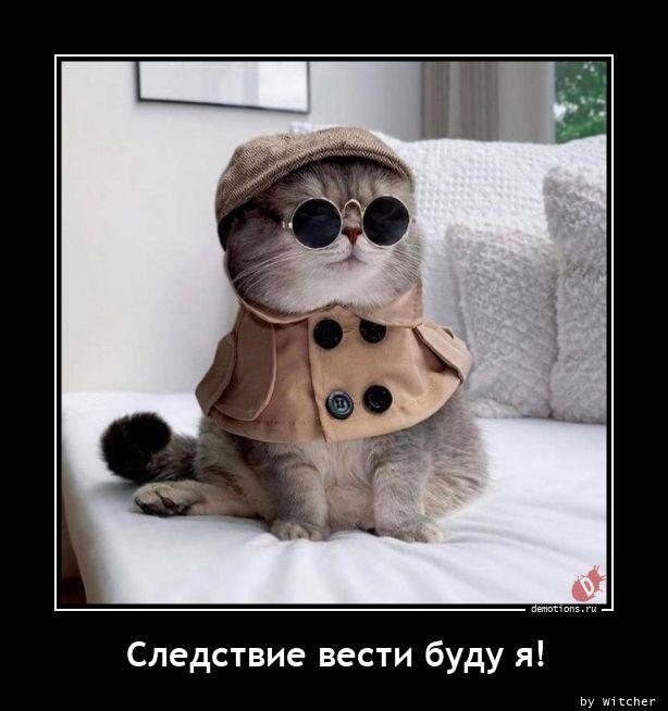 1606895947_demki-11.jpg