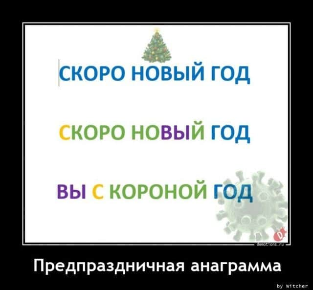 1606984446_demki-10.jpg