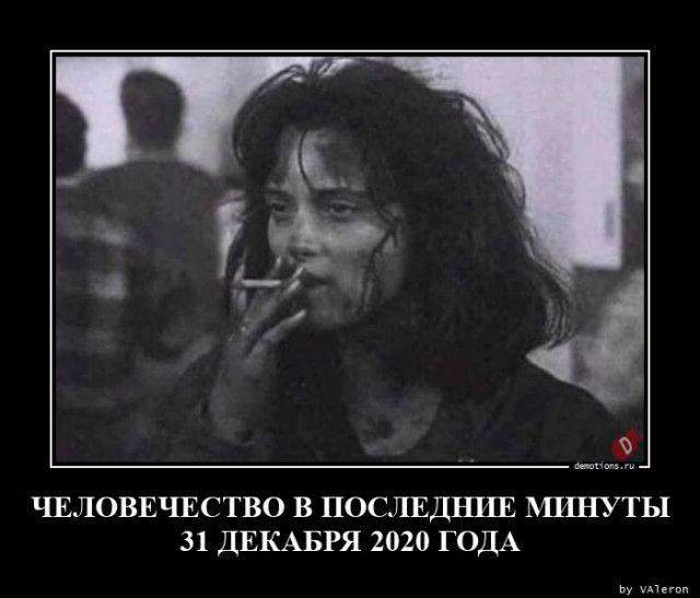 1606984411_demki-5.jpg