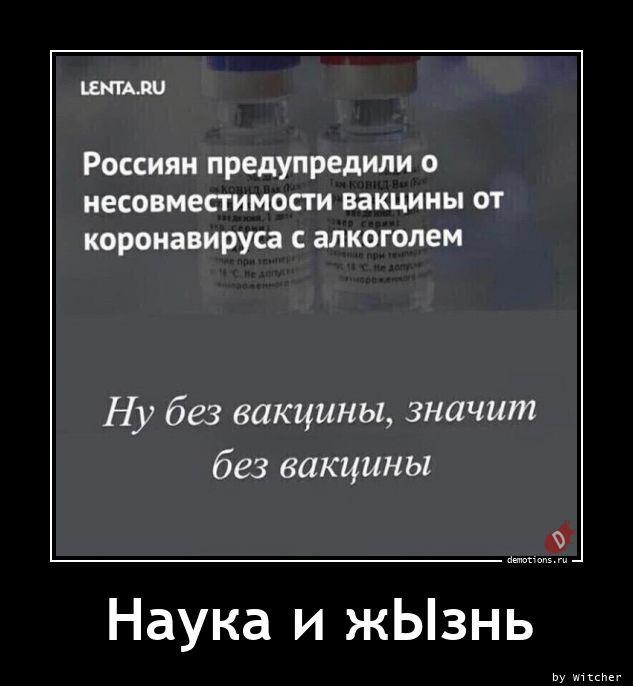 1606984443_demki-11.jpg