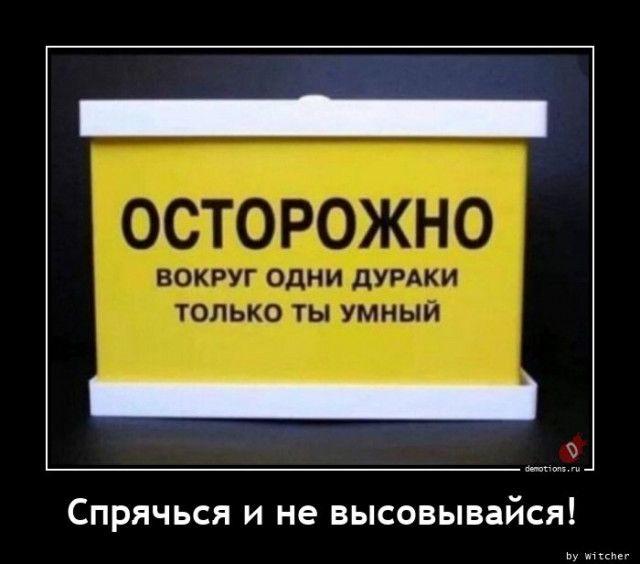 1606984400_demki-3.jpg