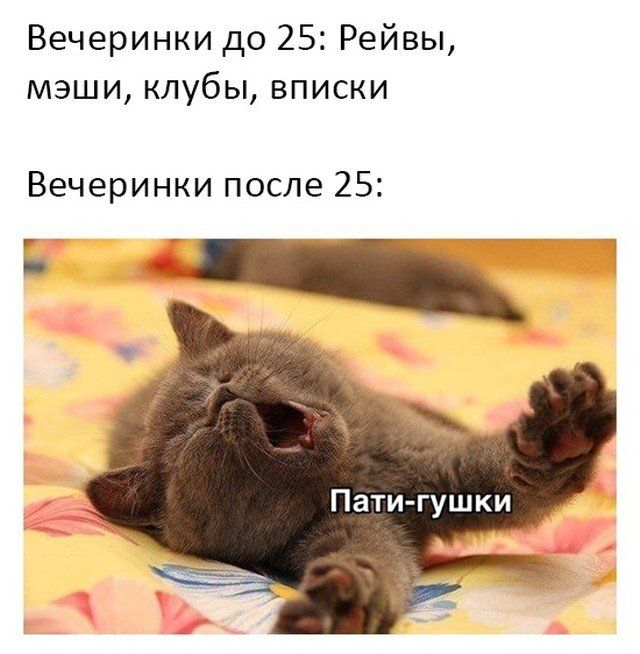 237289_12312.jpg