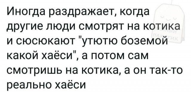 1606995223_prikol-5.jpg