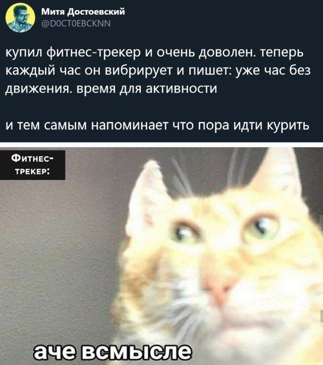 1606995218_prikol-34.jpg