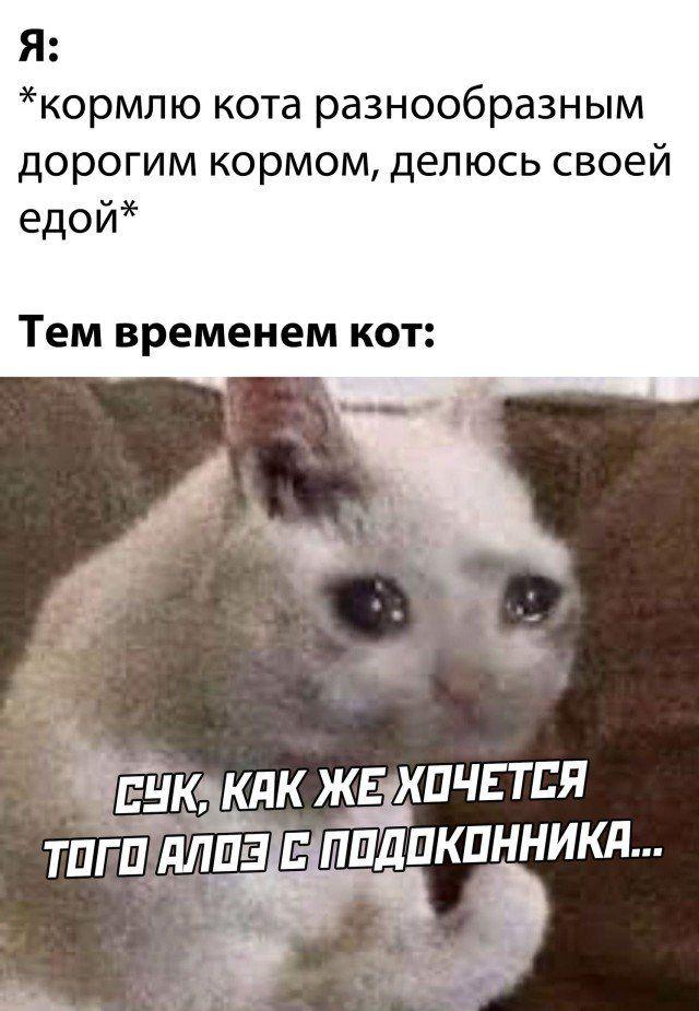 1607033770_23.jpg