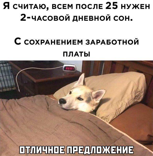 1607033800_3.jpg