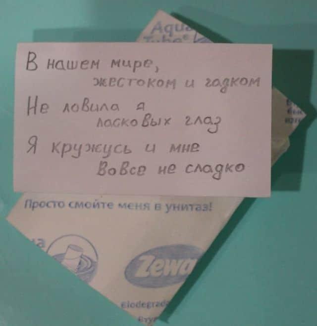 socsetey-rifmy-zabavnye-kartinki-smeshnye-kartinki-fotoprikoly