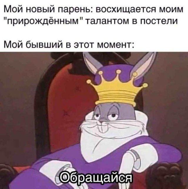 237838_65382.jpg