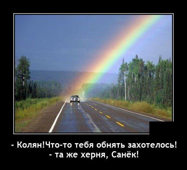 237839_69169.jpg