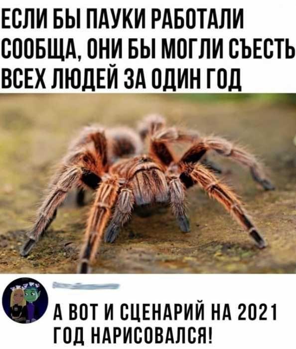 1607310849_1607279389_09.jpg