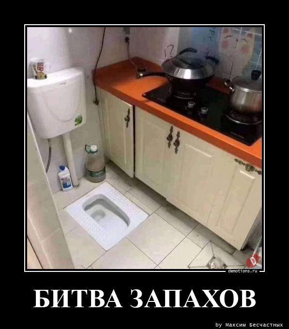 1607500843_demy-8.jpg