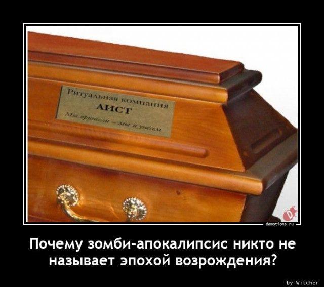 1607500771_demy-5.jpg