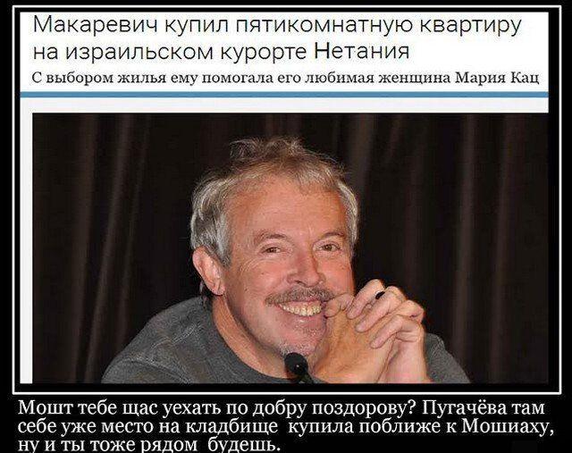 205256_6_trinixy_ru.jpg
