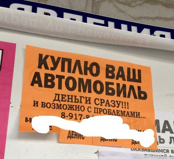205260_3_trinixy_ru.jpg