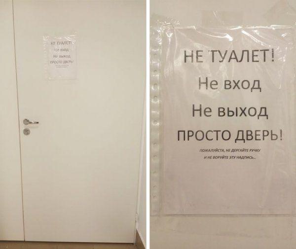 205260_5_trinixy_ru.jpg