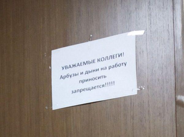 205260_13_trinixy_ru.jpg