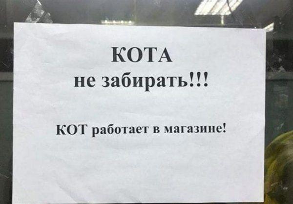 205260_7_trinixy_ru.jpg